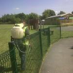 Grounds Maintenance, School Grounds