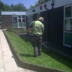 Grounds Maintenance, School Grounds