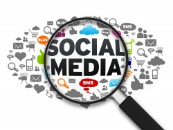 Social Media in Horticulture