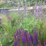 soft landscaping contractor yorkshire