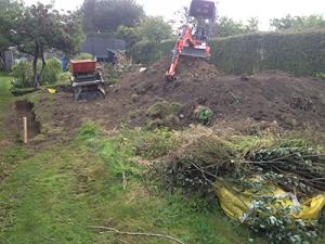 landscaping lepton 1
