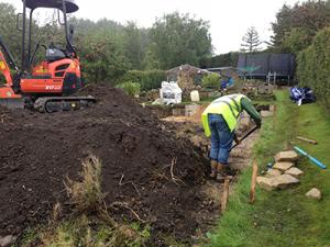 landscaping lepton