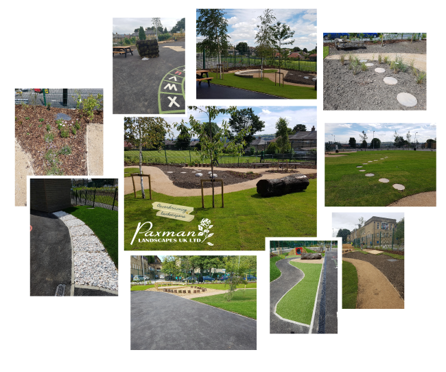 Landscaping School Grounds: Montage Royds Hall