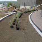 University of Huddersfield Landscaping 6