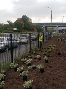 Ancon Sheffield Landscaping 1